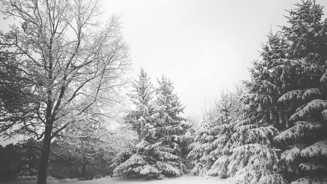 Winter Storm Watch issued for multiple counties across Northeast Ohio
