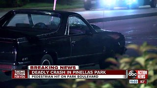 Police investigating after pedestrian struck, killed by vehicle in Pinellas Park