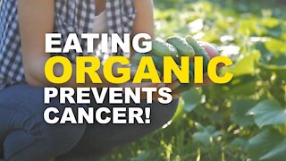 Cancer Fighting Foods | Benefits of Eating Organic