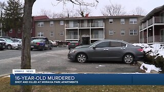 16-year-old shot and killed/New task force
