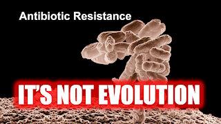 Antibiotic Resistance IS NOT Evolution