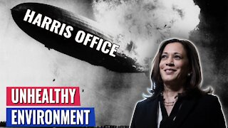 AMERICAN HORROR STORY: BOMBSHELL REPORT ABOUT WORKING FOR KAMALA HARRIS