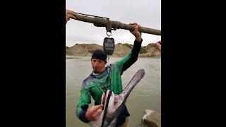 2021 paddle fishing
