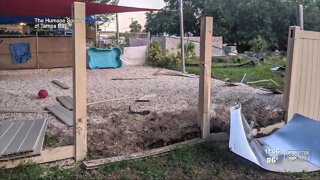 Search for driver who plowed through yard