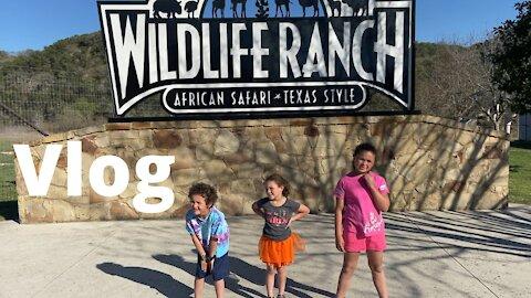 African safari Texas Style USA Wildlife Ranch   kids Vlog
