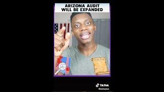 Arizona Election Audit Insider - FUNNY (from TikTok)