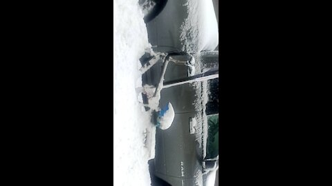 BLIZZARD IN ALASKA ,NEW JERSEY💙