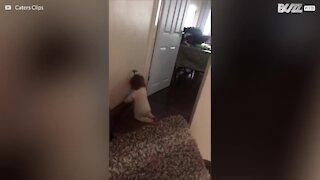 Bimba è infastidita dal battiscopa