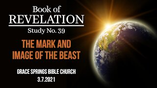 Revelation N0. 39: The Image and Mark of the Beast