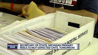 Metro Detroit voters flock to polls for presidential primary