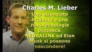 Uno scienziato brillante e una nanotecnologia pazzesca.