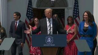 Trump Likes Fauci!