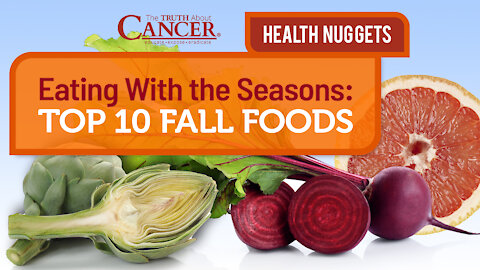 The Truth About Cancer Presents: Health Nuggets - Top 10 Fall Foods