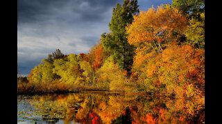 """Oh Hello, October..."" ft. Victoria Albright 10/1/21"