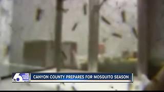 Canyon County expecting average mosquito year