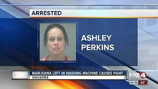Marijuana left in washing machine causes fight in Florida