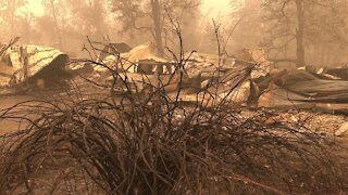 At Least 35 People Killed In Wildfires Across The U.S.