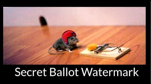 Dr Good Vibes: Secret Ballot Watermark
