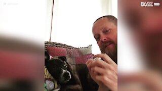 Il fantastico duetto tra cane e padrone