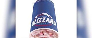 Dairy Queen debuts new Blizzards