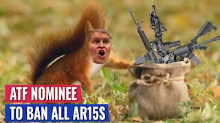 BREAKING: TED CRUZ GETS BIDEN'S ATF NOMINEE TO ADMIT HE WANTS TO BAN ALL AR-15S