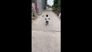 Two little guys walking together - My pigeon and my little boy