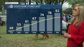 Friday forecast: 1 more warm day before storms