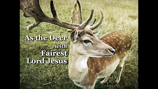 As The Deer with Fairest Lord Jesus - Piano Praise