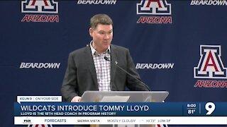 Wildcats introduce Tommy Lloyd