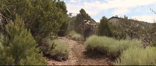 Spring Mountain youth camp evacuated