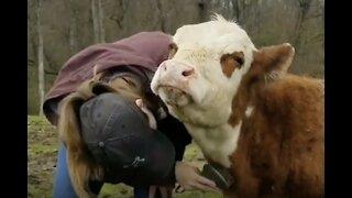 Couple Creates Incredible Animal Sanctuary!