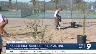 Pueblo High School students plant trees