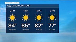 Sunny Sunday with less humidity
