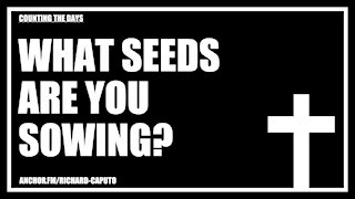 What Seeds Are You Sowing?