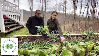 Preparedness With Permaculture!