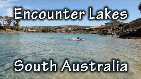 Encounter Lakes Marathon Swim, South Australia (Physical Challenge #1)