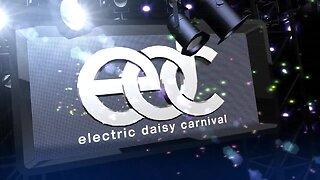 EDC Las Vegas virtual rave