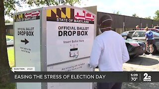 Easing the stress of voting in the 2020 election