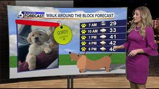Dog Walking Forecast - McKenna