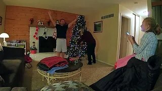 Christmas Tree Rising Fast TIME Lapse