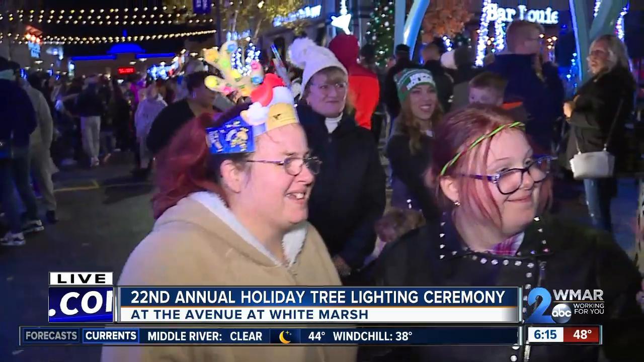 Annual holiday tree lighting ceremony