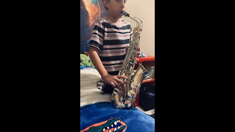 Play Sax with his Ferret