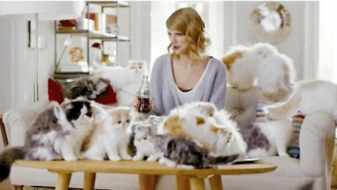10 Things You Should Know Before Dating A Cat Lady