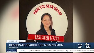 Desperate search for missing mom Maya Millete continues
