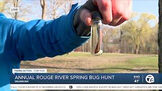 Rouge River Spring Bug Hunt
