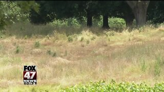 Meridian Twp. taking action to clean up old golf course