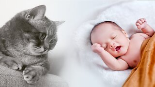 Cats Meeting Baby for the FIRST Time part 2