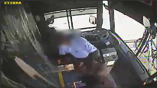 Caught on camera: Broward County bus driver punched in face