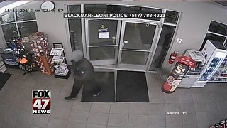 Police investigating armed robbery at local convenience store