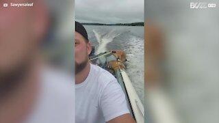 Dog has great fun on first boat trip